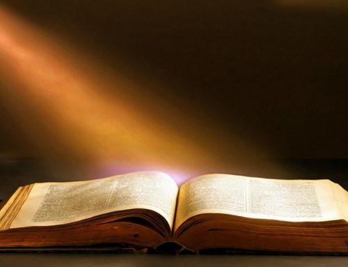 31 Genn – Commento al Vangelo di P. Ronchi