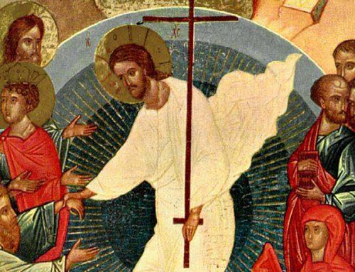17 Genn – Commento al Vangelo di P. Ronchi